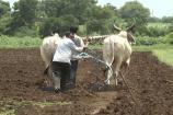 ગુજરાત સરકારનો ખેડૂતોની લોન માફીનો નિર્ણય ઐતિહાસિકઃ મોદી