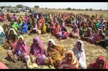ભાવનગર: જમીન સંપાદન મામલે ફરી ખેડૂતો આવ્યા મેદાનમાં, ખેતરમાં બેસીને કર્યો વિરોધ