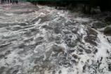 જૂનાગઢ : ગિરનાર પર્વત ઉપર ભારે વરસાદ, બોરદેવી જંગલમાં નદી-નાળાં છલકાયાં