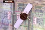 Crime Branch: દિયરે જ ભાભીનુ ઢાળ્યું ઢીમ, 17 બેંકોમાંથી મળી નકલી ચલણી નોટો