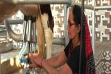Women's Day: નારી શક્તિનું આ શ્રેષ્ઠ ઉદાહરણ, મહેસાણાની શાન એવા નેનીબેન ચૌધરી