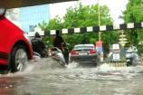 Video: સમગ્ર રાજ્યમાં જામ્યો વરસાદી માહોલ, ક્યાંક ધોધમાર તો ક્યાંક ઝરમર