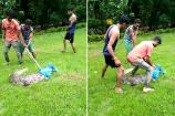 Video: વડોદરા વનવિભાગની ટીમે સયાજી બાગમાંથી પકડ્યો મહાકાય મગર