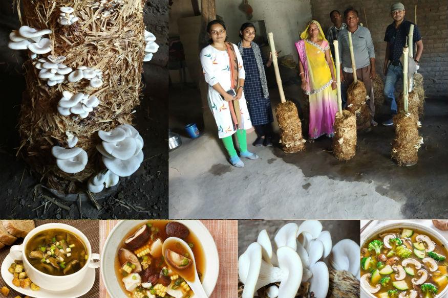 ગુજરાતના લોખંડી પુરૂષ અને રાષ્ટ્રીય એકતાના શિલ્પી સરદાર વલ્લભભાઇ પટેલની વિશ્વની સૌથી ઉંચી ૧૮૨ મીટરની પ્રતિમા-સ્ટેચ્યુ ઓફ યુનિટીના નિર્માણ બાદ દેશ-વિદેશના પ્રવાસીઓ મોટી સંખ્યામાં સ્ટેચ્યુ ઓફ યુનિટીની મુલાકાતે આવી રહયાં છે. સ્ટેચ્યુ ઓફ યુનિટીની સાથોસાથ સરકાર દ્વારા ફલાવર ઓફ વેલી ઉપરાંત વર્લ્ડ કલાસ જંગલ સફારીપાર્ક વગેરે જેવા આકાર પામી રહેલાં વિવિધ પ્રોજેકટોને લઇને નર્મદા જિલ્લો વિશ્વના પ્રવાસન નકશામાં અંકીત થઇ ચૂકયો છે, ત્યારે આ પ્રવાસન વિકાસની સાથોસાથ સ્થાનિક કક્ષાએ જરૂરિયાતમંદ લોકોને રોજગારીની વધુ તકો ઉપલબ્ધ બની રહે તે દિશામાં જિલ્લા પ્રશાસન દ્વારા અનેકવિધ પ્રયાસો થઇ રહયા છે.