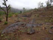 અમદાવાદઃ ખોટી રીતે જમીન પચાવી પડાવનાર 24 સામે FIR કરાશે