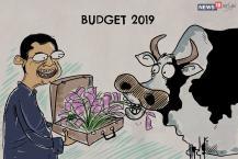 Budget 2019 : સરકારે નાના ઉદ્યોગકારો સાથે ગૌવંશની પણ કરી ચિંતા
