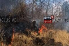Video: અરવલ્લીના શામળાજી પાસે ડુંગર પર ભીષણ આગ