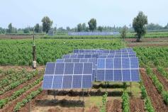 આ ગામનાં ખેડૂતોએ તળનાં જળ ખેંચવા સોલર પેનલો લગાવી ખેતી ખર્ચ ઘટાડ્યો