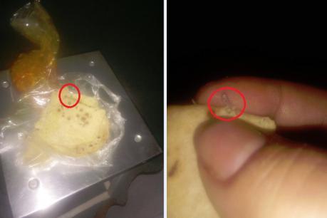 વડોદરાઃ પારૂલ હોસ્પિટલમાં દર્દીના ભોજનમાંથી નીકળી સ્ટેપલર પીન