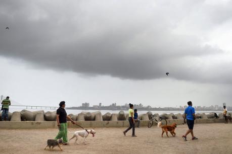 દુષ્કાળગ્રસ્ત જિલ્લાઓમાં વરસાદ લાવવા સરકારે રૂ 30 કરોડ ફાળવ્યા