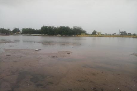 બનાસકાંઠાનાં 14 તાલુકાઓમાં મેઘ મહેર, દાંતામાં 4 ઇંચથી વધુ વરસાદ