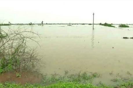 ભાવનગરઃ ધોલેરાના 12 ગામો વરસાદી પાણીમાં, ખુણ ગામ બેટમાં ફેરવાયું